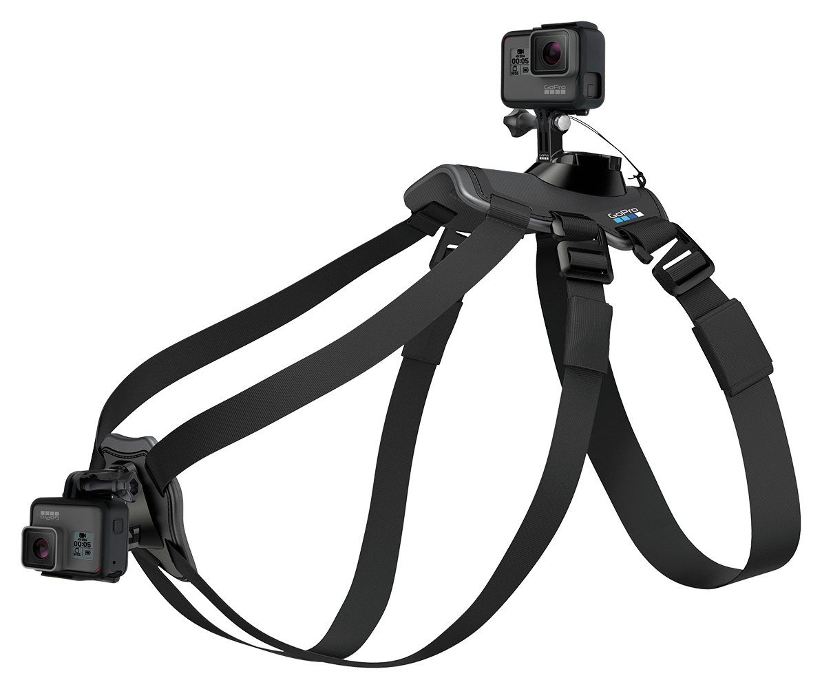 Image of GoPro Fetch Dog Harness Mount