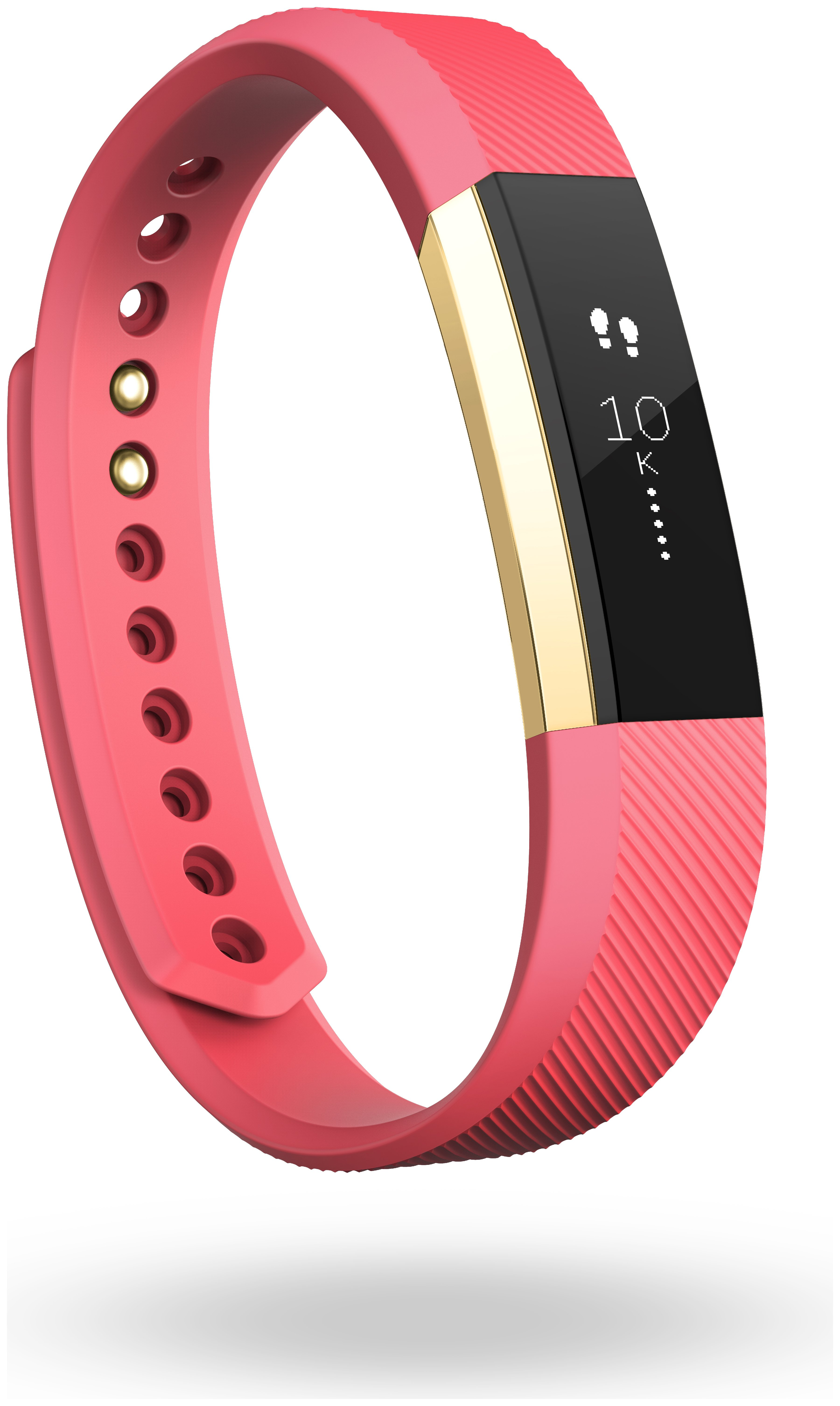 Image of Fitbit Alta Activity & Sleep Special Edition Large Wristband
