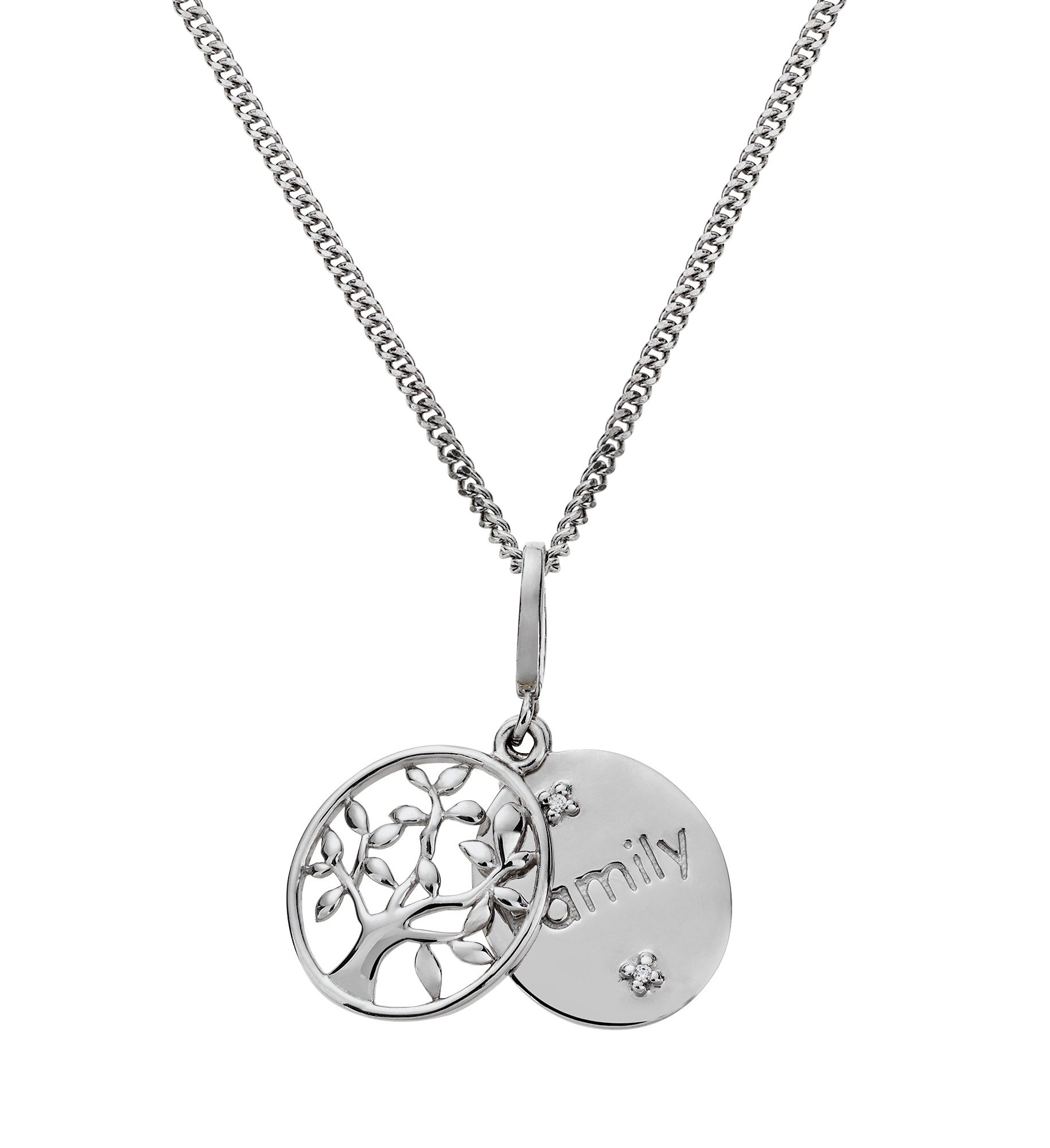 Image of Moon & Back Silver CZ Family Tree Double Disc Pendant