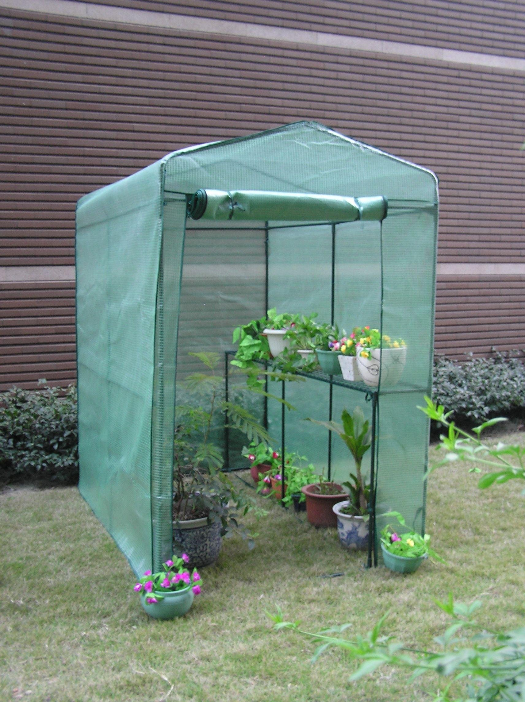 Image of Argos - Walk-In Greenhouse - Large