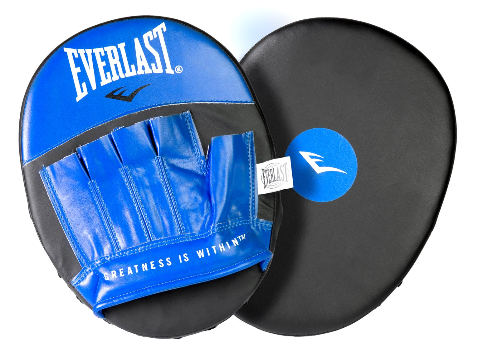 Everlast Hook and Jab Boxing Pads