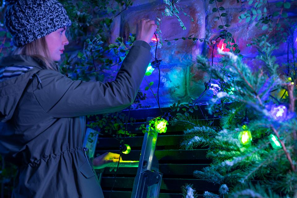 An image of a woman on a ladder arranging colourful Christmas lights around a fence.