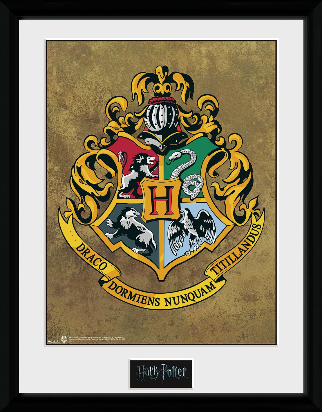 GB Eye Harry Potter Hogwarts 30 x 40cm Collector Print