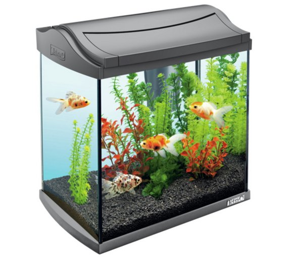 Buy tetra fish tank aquaart ii graphite 30l at for Small fish tanks for sale