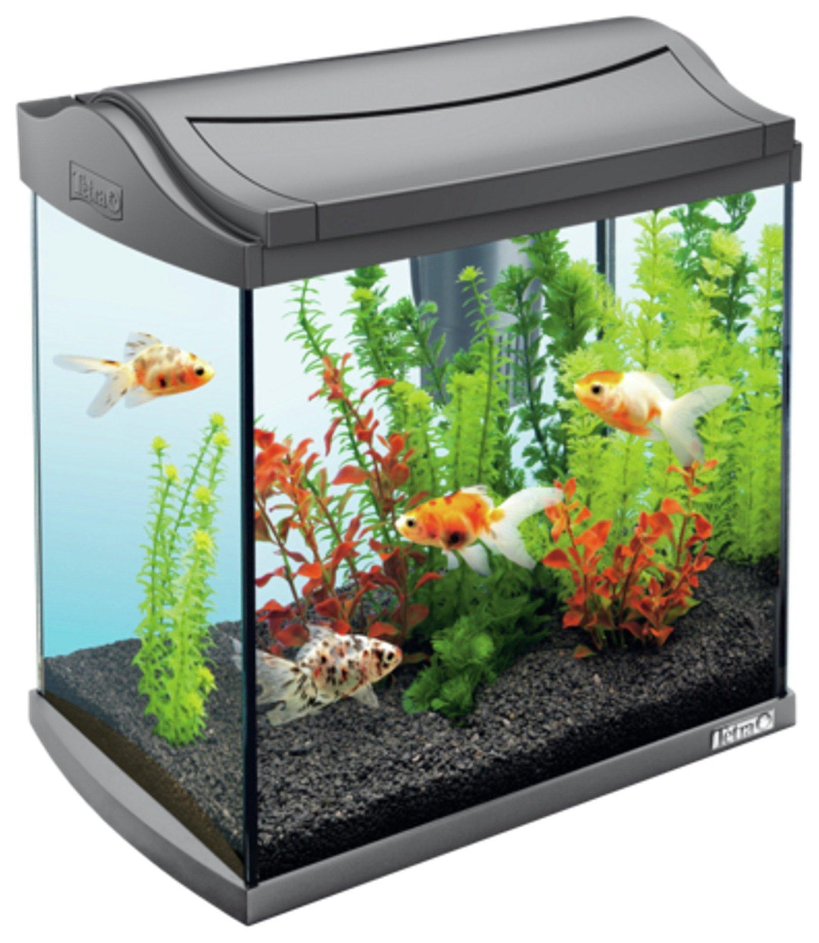 Buy Tetra Fish Tank Aquaart Ii Graphite 30l At Argos Co Uk