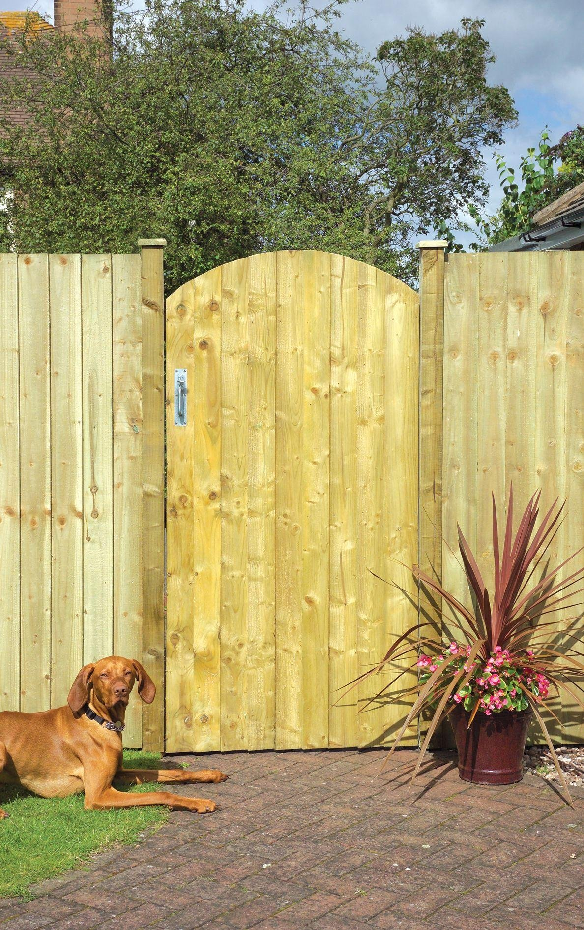 Image of Arched Feather Edge Gate - 90x180cm.