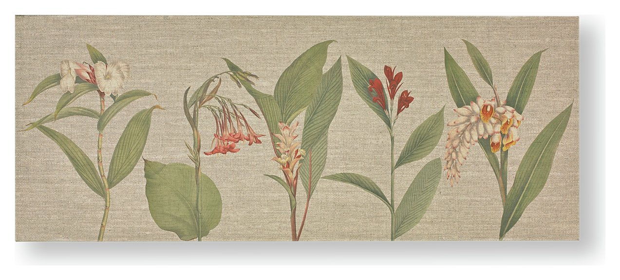 Image of Graham & Brown Botanical Bliss Print on Fabric