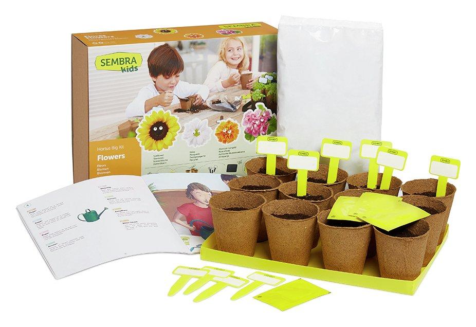 Sembra Summer Flowers Garden Growing Play Kit