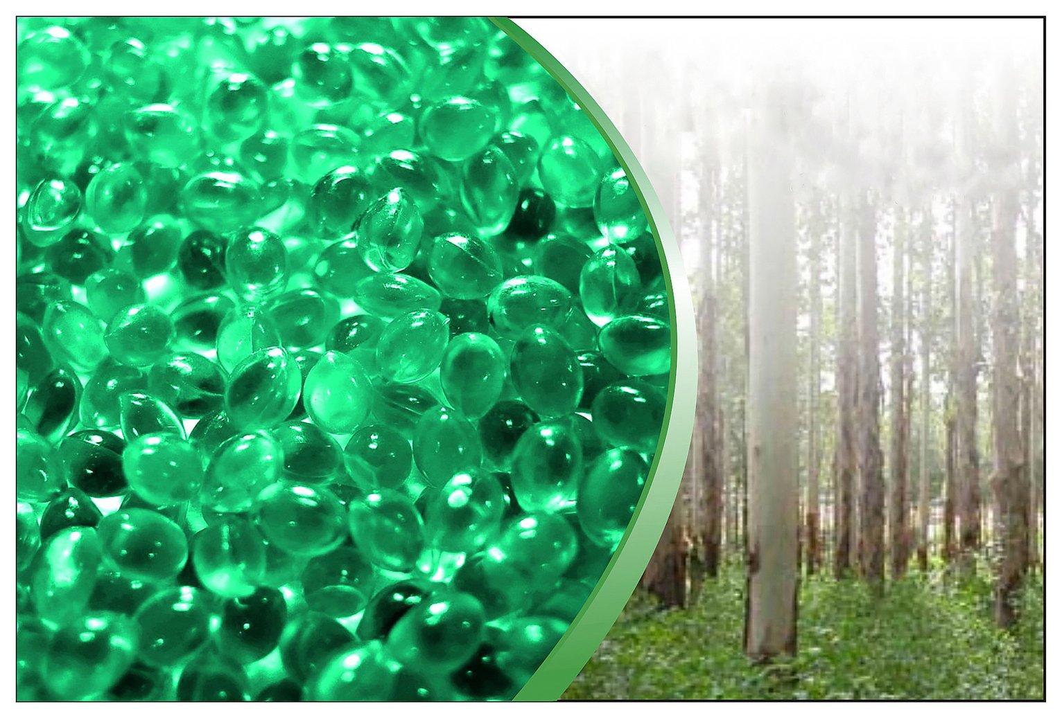 Canadian Spa Hot Tub Aromatherapy Eucalyptus Scent