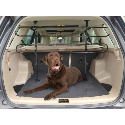Buy Universal Standard Dog Guard Dog Travel And Car Products Argos