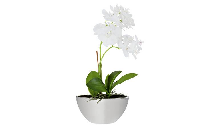 Argos Home Large Orchid Artificial Arrangement - Grey