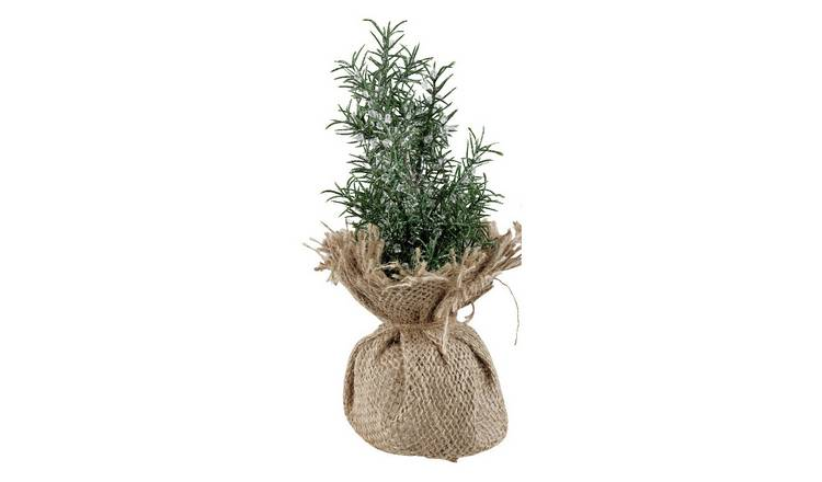 Argos Home Mini Faux Tree