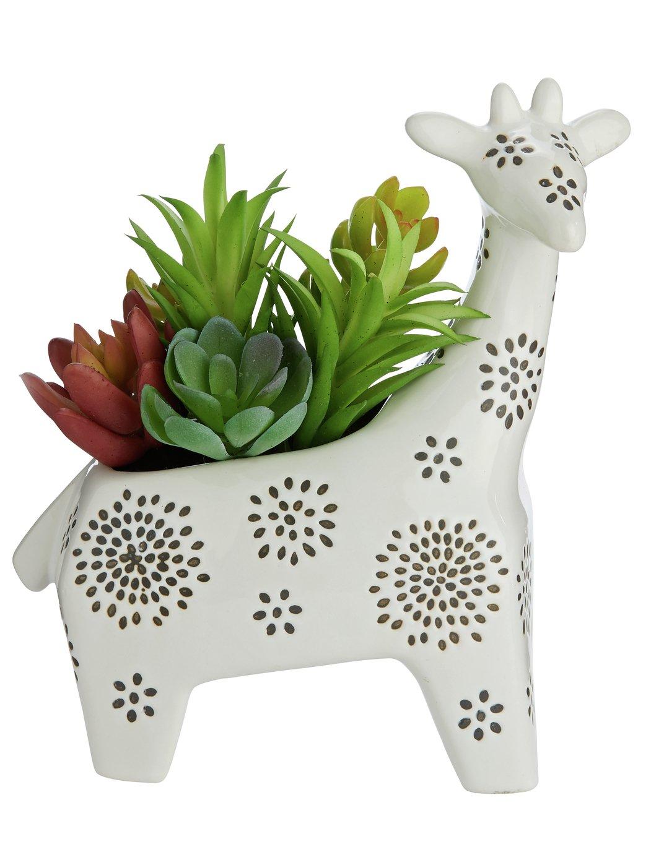 Sainsbury's Home Giraffe Succulent Pot