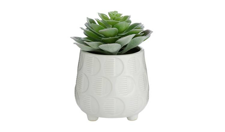 Buy Argos Home Faux Succulent In Ceramic Pot Artificial Flowers Plants And Trees Argos