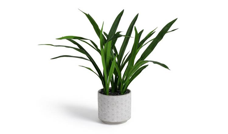 Argos Home Large Artificial House Plant
