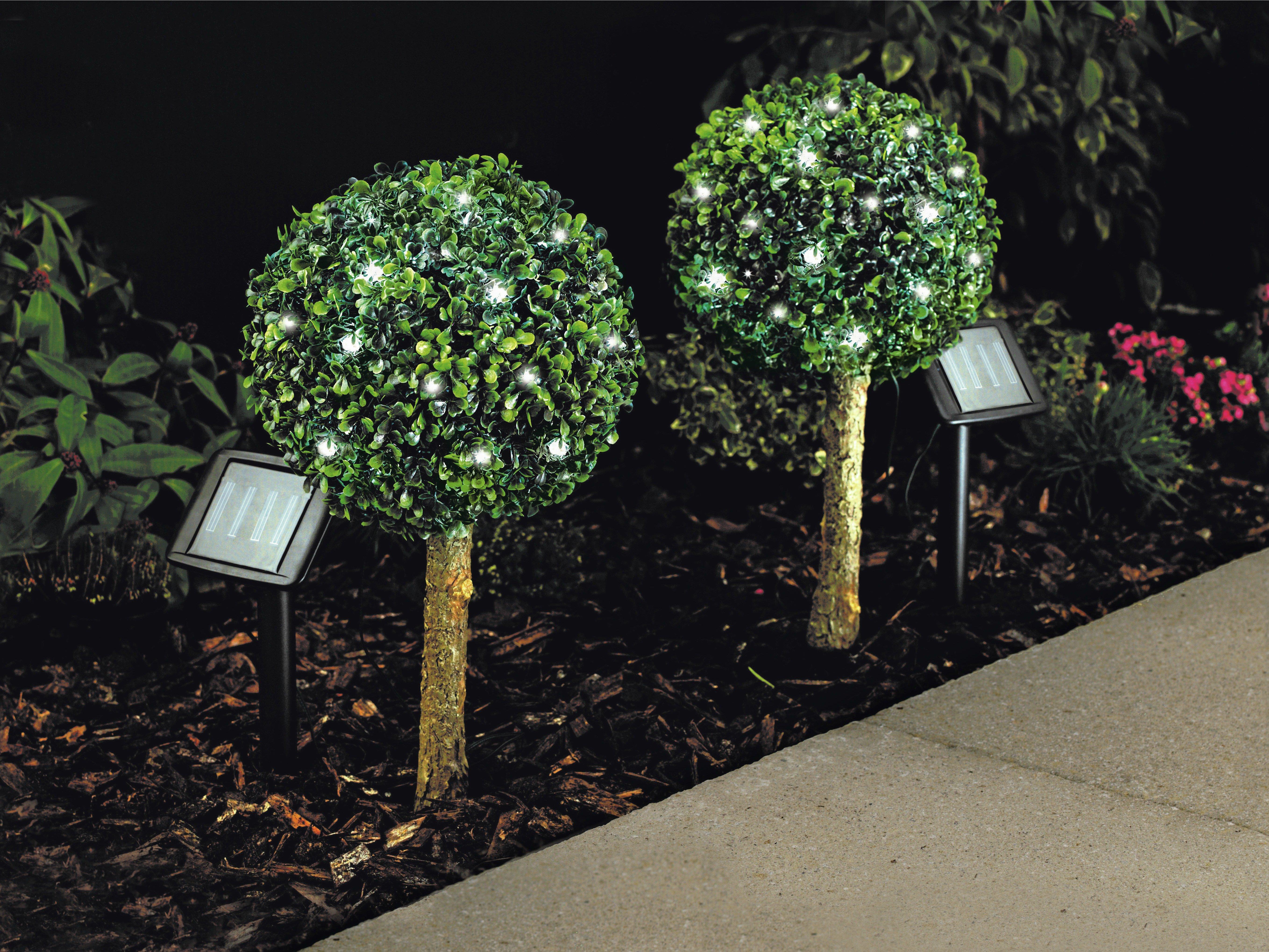 home set of 2 solar bay tree lights white gay times uk. Black Bedroom Furniture Sets. Home Design Ideas