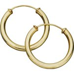 more details on 9ct Gold Capped Hoop Earrings.