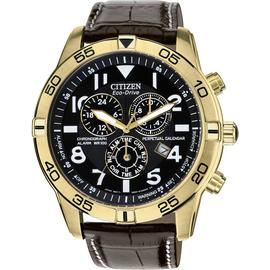 Citizen Eco-Drive Men's Brown Strap Perpetual Calendar Watch