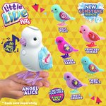 more details on Little Live Pets Birds Assortment.