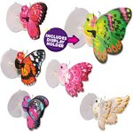 more details on Little Live Pets Butterflies Assortment.
