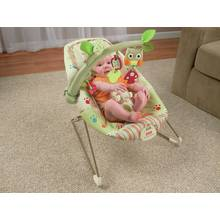 Fisher-Price Woodsy Friends Comfy Time Bouncer.