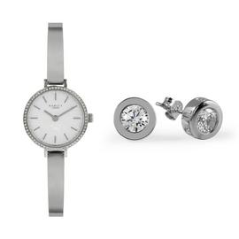 Radley Ladies Stainless Steel Watch & Earrings Gift Set