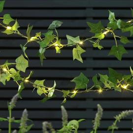 Argos Home 20 Ivy Solar String Lights