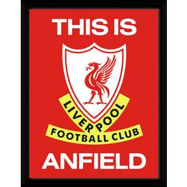 Liverpool FC This is Anfield Framed Print