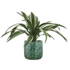 Argos Home Faux Sisal Hemp Plant in Ceramic Pot