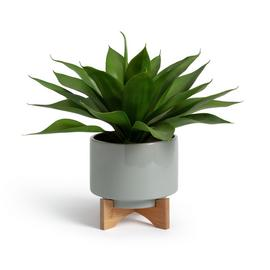 Argos Home Agave Faux Plant in Ceramic Pot with Stand