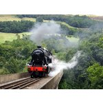 more details on Activity Superstore Family Steam Train Gift Experience.