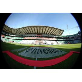 Adult Tour of Twickenham Stadium  Gift Experience
