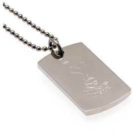 Tottenham Hotspur FC Stainless Steel Dogtag and Chain