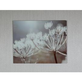 Arthouse Champagne Floral Glass Print