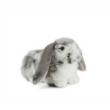 Living Nature Dutch Lop Ear Rabbit - Grey