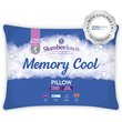 more details on Slumberdown CoolMax Memory Foam Pillow.