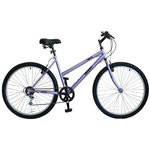 more details on Flite Rapide 17 Inch Frame Women's Mountain