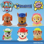 more details on Paw Patrol Mash' Ems.