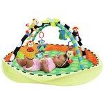 more details on Sassy Pop Up Developmental Playmat.