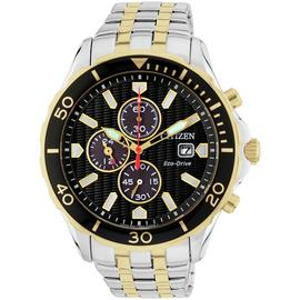 Citizen Eco-Drive Men's Two Tone Fixed Bezel Watch