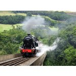 more details on Steam Train Ride for Two.