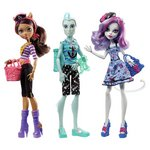 more details on Monster High Shriek Wrecked Assortment.