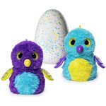 more details on Hatchimals Draggles  Purple Egg.