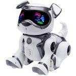 more details on Teksta Voice Recognition Robot Puppy.