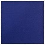 more details on Denby Set of 4 Faux Leather Placemats - Deep Blue.