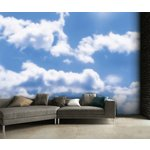 more details on 1Wall Sky Clouds Wall Mural.