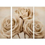 more details on Collection Chantilly Roses Triptych Canvas - Set of 3.