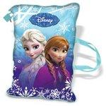 more details on Frozen Soft Secret Diary.