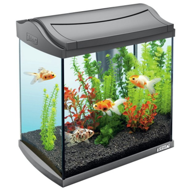 Buy tetra fish tank aquaart ii graphite 30l at for Tetra fish tanks