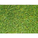 more details on Leisure Artificial Grass - 2 x 6 Metres.
